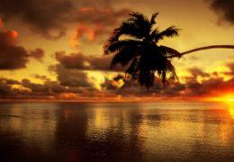 Рассвет в раю - живые обои