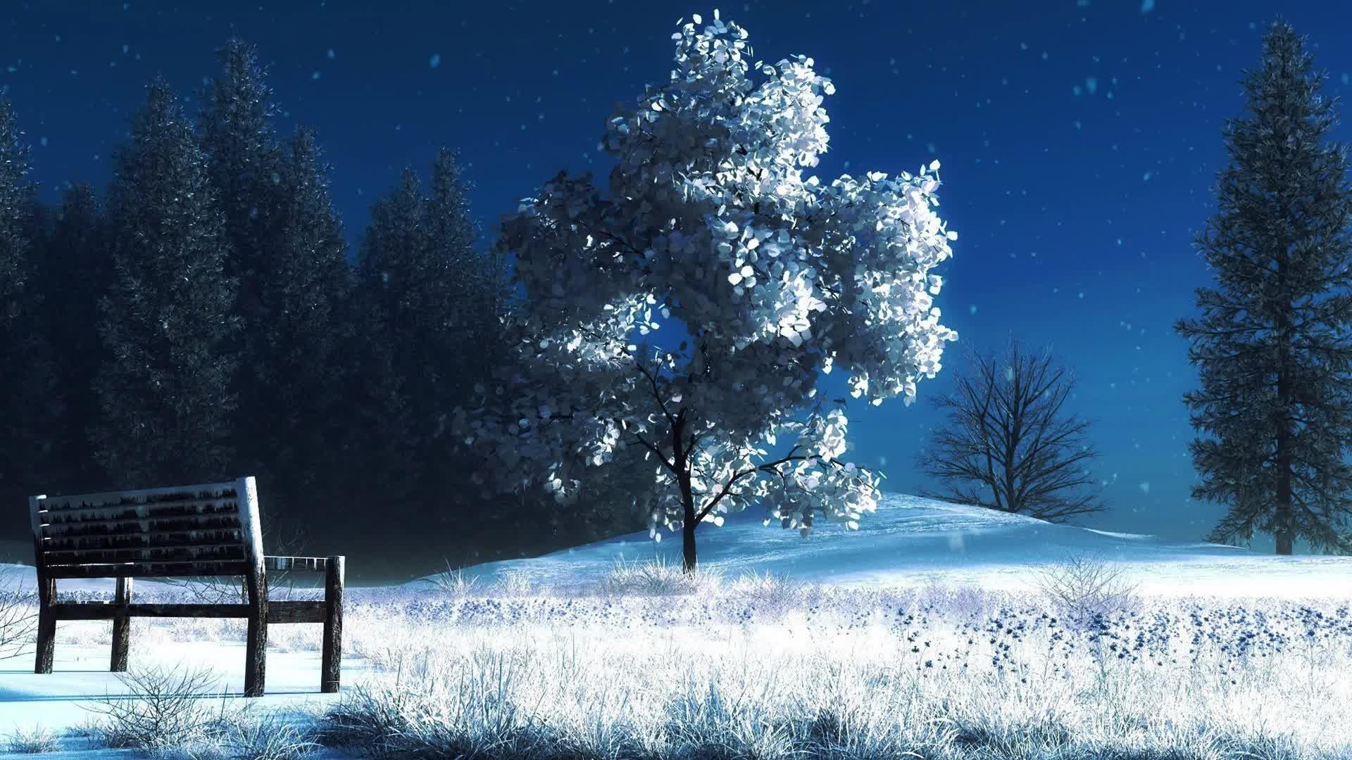 Зимний парк - живые обои